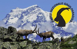 Nationalpark Gran Paradiso